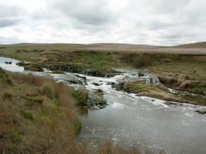 Sedimentación, paleosuelos y dinámica de planicies de inundación. Relación con los cambios paleoclimáticos del Cenozoico tardío en el sudeste bonaerense.