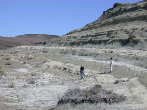 Controles extrínsecos e intrínsecos de los depósitos sedimentarios del Paleógeno y Neógeno temprano en las cuencas patagónicas de San Jorge y Austral, Argentina
